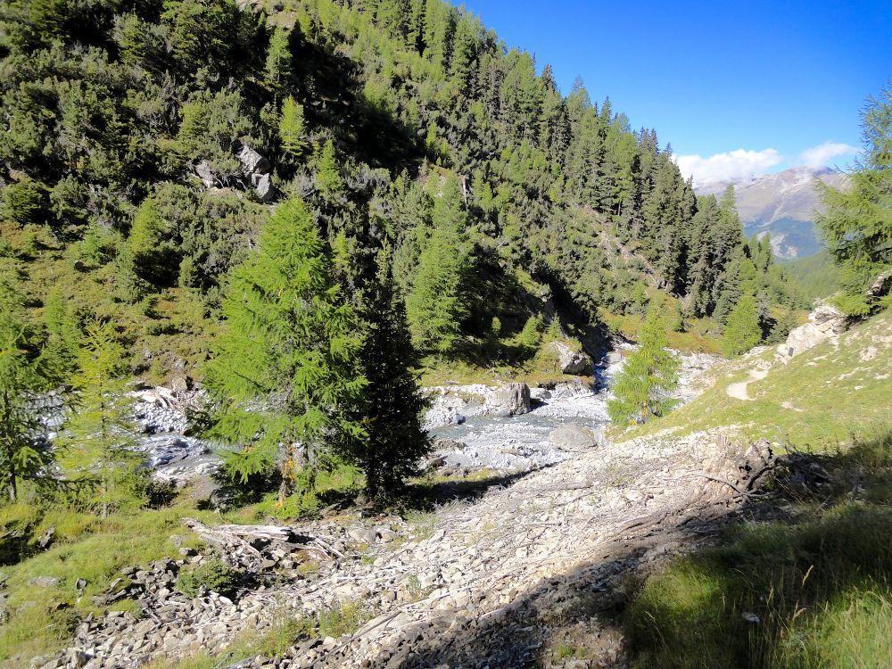 En compagnie des cerfs et des marmottes au Val Trupchun