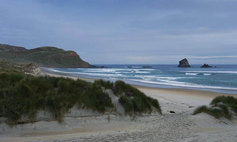 Une journée à la péninsule d'Otago