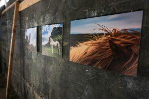 Exposition photos dans l'ancienne usine de hareng de Djupavik
